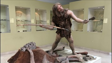 Did Ear Infections Wipe Out the Neanderthals?