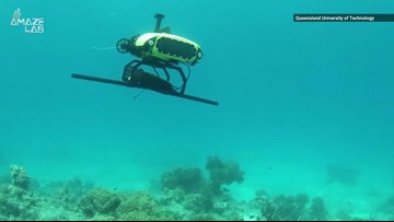 These Killer Drones Are Saving The Great Barrier Reef In More Ways Than One
