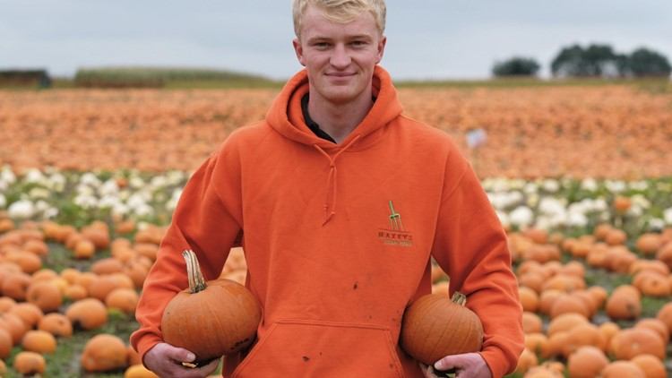 Check Out Gourd-eous Footage of a Massive Pumpkin Patch Started by a 13-Year-Old!