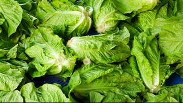 Nationwide recall of romaine lettuce due to E. coli outbreak, US officials say