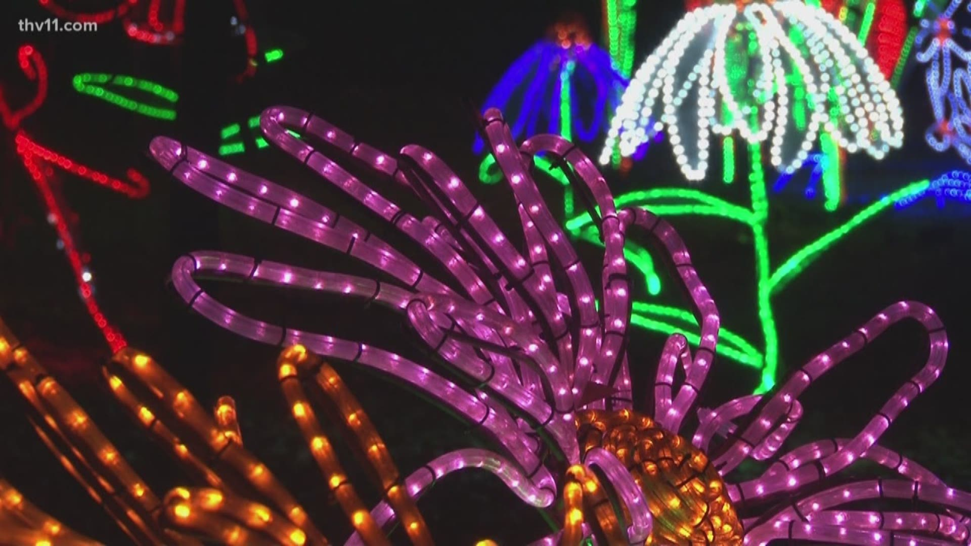 Garvan Gardens Christmas Lights 2021 5 Million Lights On Display At Garvan Gardens Thv11 Com