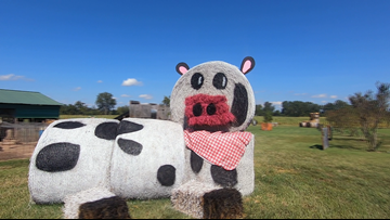 Hot Arkansas weather making it hard for farms to open fall-focused activities