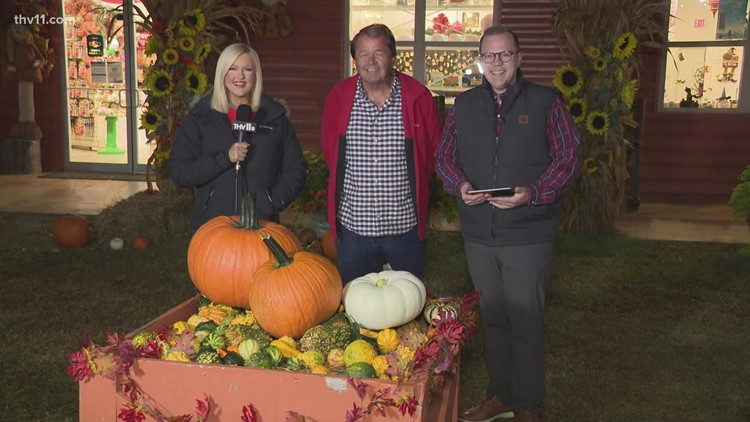 Motley's Pumpkin Patch expecting another record-breaking year