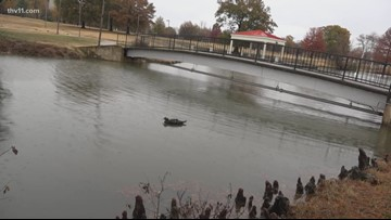 Stout trout stocked in urban ponds ahead of Thanksgiving