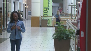 Future of Park Plaza mall not bright due to rise of online shopping