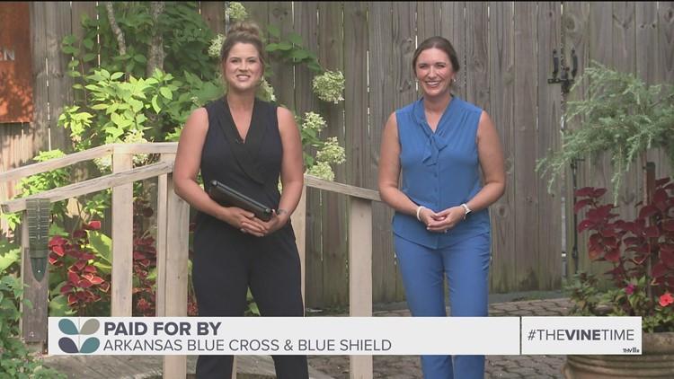 Arkansas Blue Cross and Blue Shield foundation donates $5.2 million to behavioral health programs