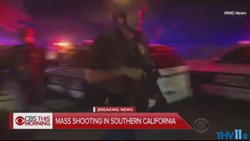 Cali mass shooting, doctor visits, traffic from fall foliage, the Vine | Midday Minute Nov. 8