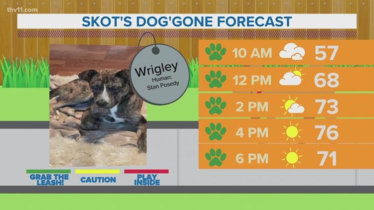 Wrigley | Skot's dog'gone forecast