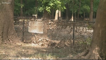 Murray Dog Park buried in flood mud