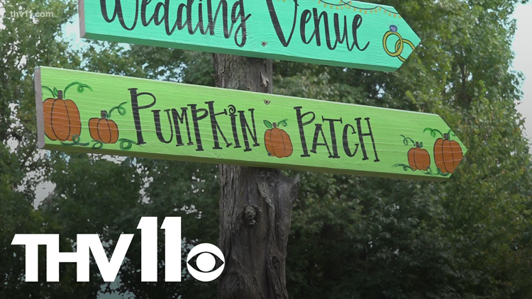 Farms gearing up for pumpkin season