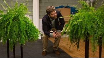 Here's the 5 funniest things about Between Two Ferns: The Movie
