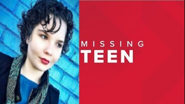 Arkansas State Police searching for missing 17-year-old, last seen heading north on Hempstead 3