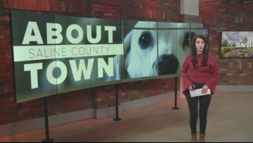 Saline Co. lawyers provide grant to help domestic abuse victims with their pets