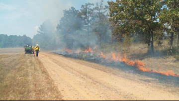 Fighting fire with fire | Prescribed burns are best way to fight wildfires