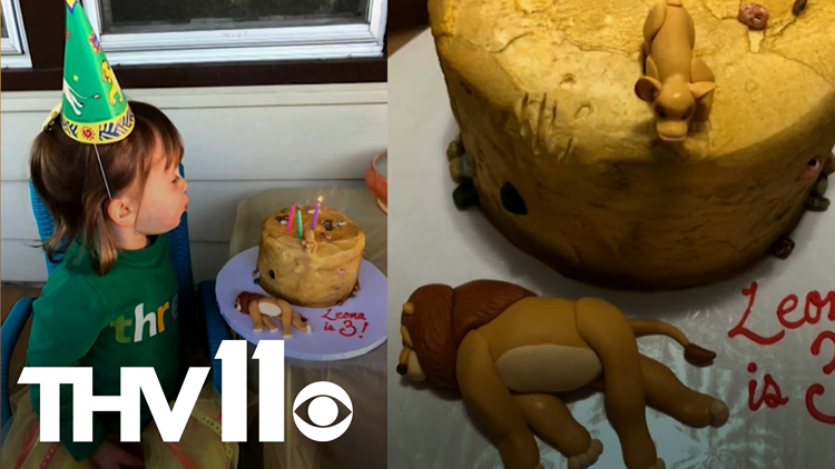 Toddler asks for Lion King birthday cake with a dark twist