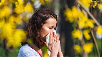 Spring is coming to Arkansas, bringing lots of pollen with it