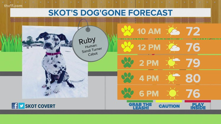 Ruby | Skot's dog'gone weather forecast