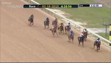 She's A Julie holds off competition in Bayakoa Stakes