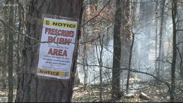 Prescribed burns: Fighting fire with fire
