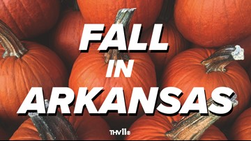 LIST | Where to go for all things fall in Arkansas