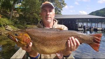 Kansas man's cutthroat trout catch breaks 32-year Arkansas state record
