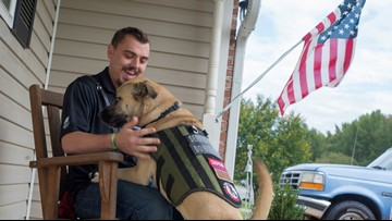 Arkansas veteran with PTSD able to forgo medication with help of 'battle buddy' service dog