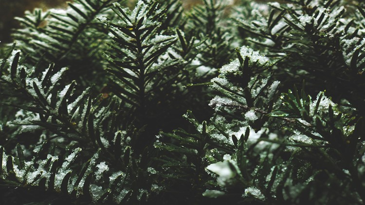 What are our current chances for a white Christmas in Arkansas?