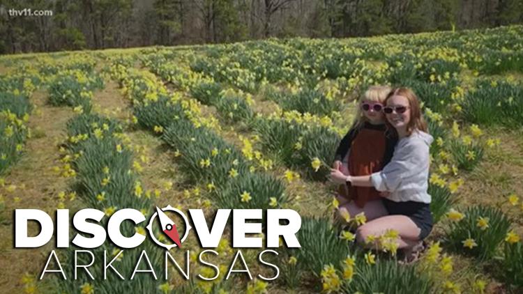 Wye Mountain | Discover Arkansas