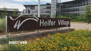 Discover Arkansas | Heifer International