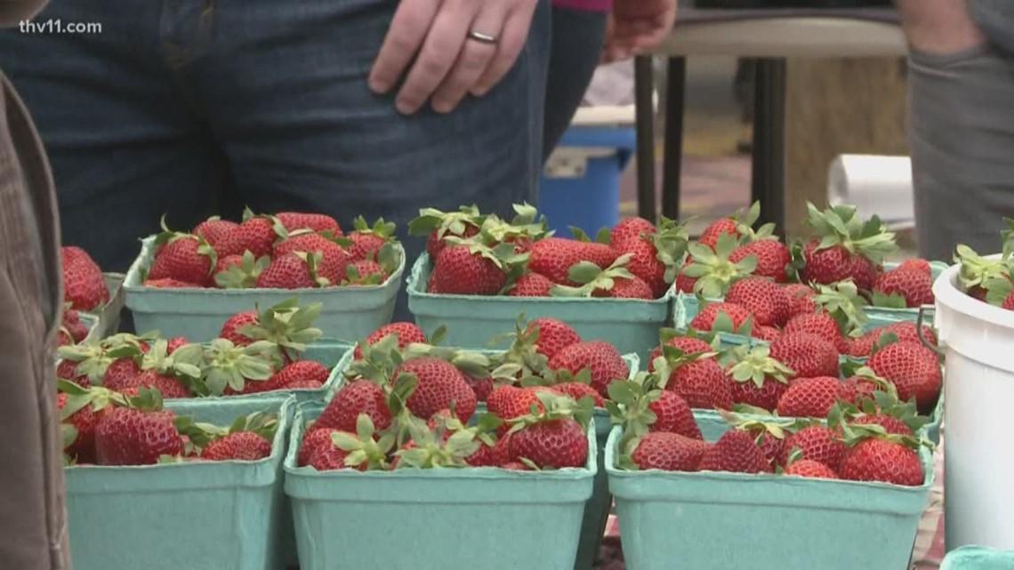 Bernice Garden in Little Rock hosting drive - thru farmer market