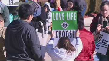 41st Annual Arkansas March for Life