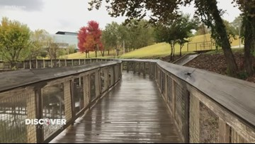 William 'Bill' Clark Presidential Wetland Park is home to the largest bat house in the state of Arkansas