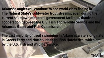 Arkansas anglers will continue to see world-class fishing in cold-water trout streams