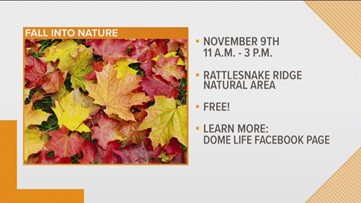 'Fall Into Nature' with Dome Life & The Nature Conservancy