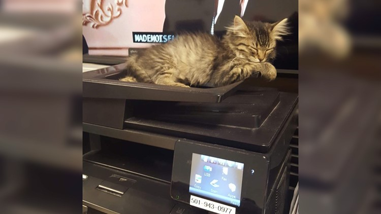 cad on printer