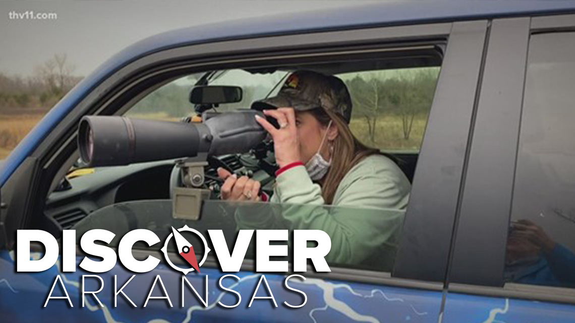 Discover Arkansas sneak peak with an eagle's nest