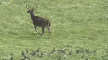 AGFC holds hunting season media day