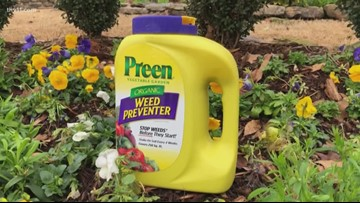 How to take care of your weeds in the winter with Chris H. Olsen