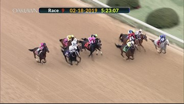 Super Steed pulls super upset at Southwest Stakes
