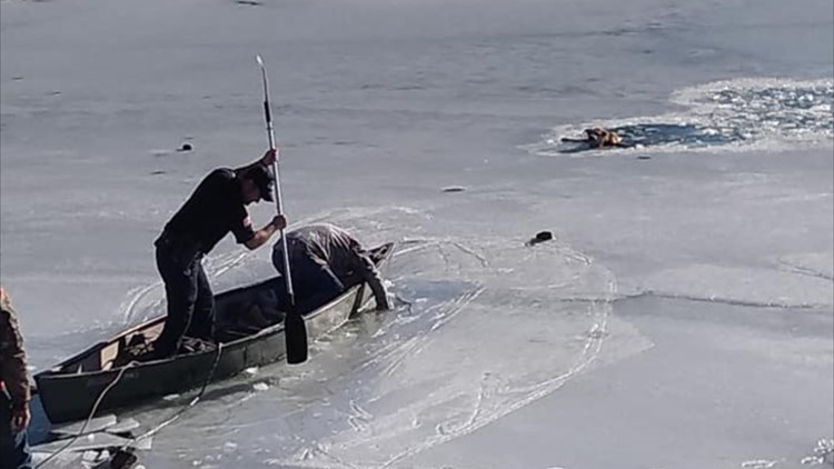 Marshall police officer, bystanders save dog on frozen city pond