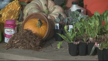 Grow your best fall garden vegetables with Chris H. Olsen