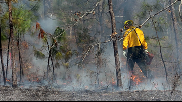 What you need to know about Arkansas under burn bans, moderate wildfire danger