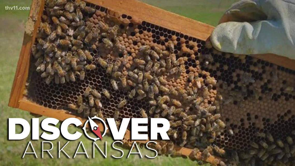 Bemis Family Farm | Discover Arkansas