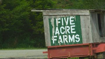 Arkansas farmsharing delivers fresh, local produce