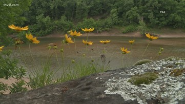 Teen drowns on the Buffalo River