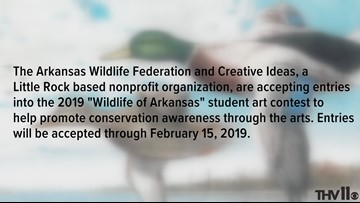 Arkansas Wildlife Federation student art contest is open for entries