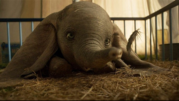 Dumbo remake doesn't fly high and is mostly forgettable
