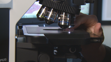 U.S. patients with rare diseases go to the doctor an average of 8 times to find answers