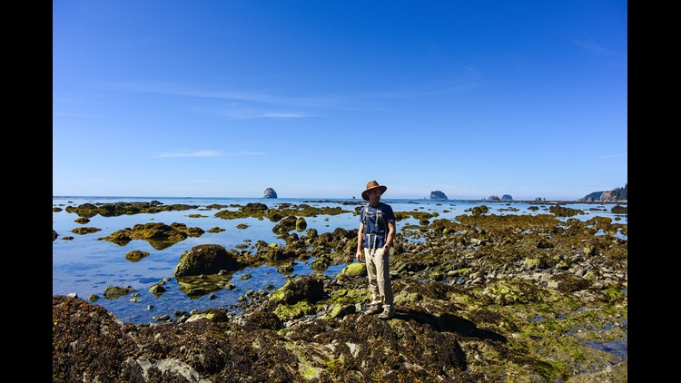 Ozette Triangle Trail within Olympic National Park. (Photo by Darren Murph/The Points Guy)