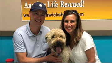 Charlotte family reunites with dog who ran away after rollover accident